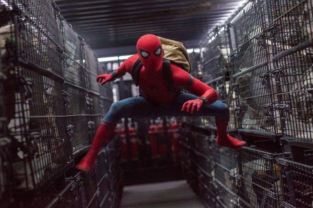 Spider-Man ภาคต่อ