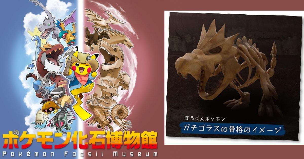 Pokemon Fossill Museum